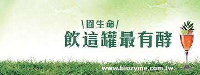 Biozyme 大漢酵素